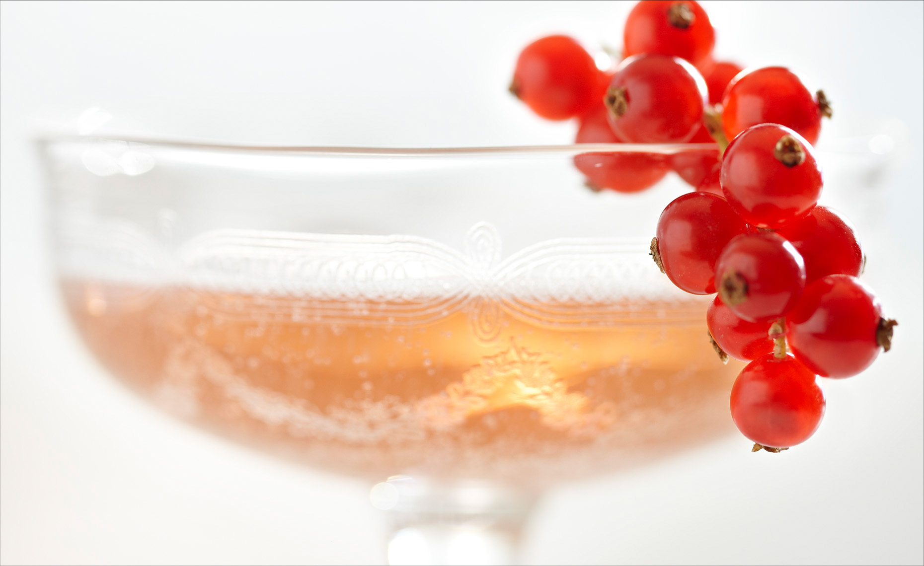 Champaign Currants-1