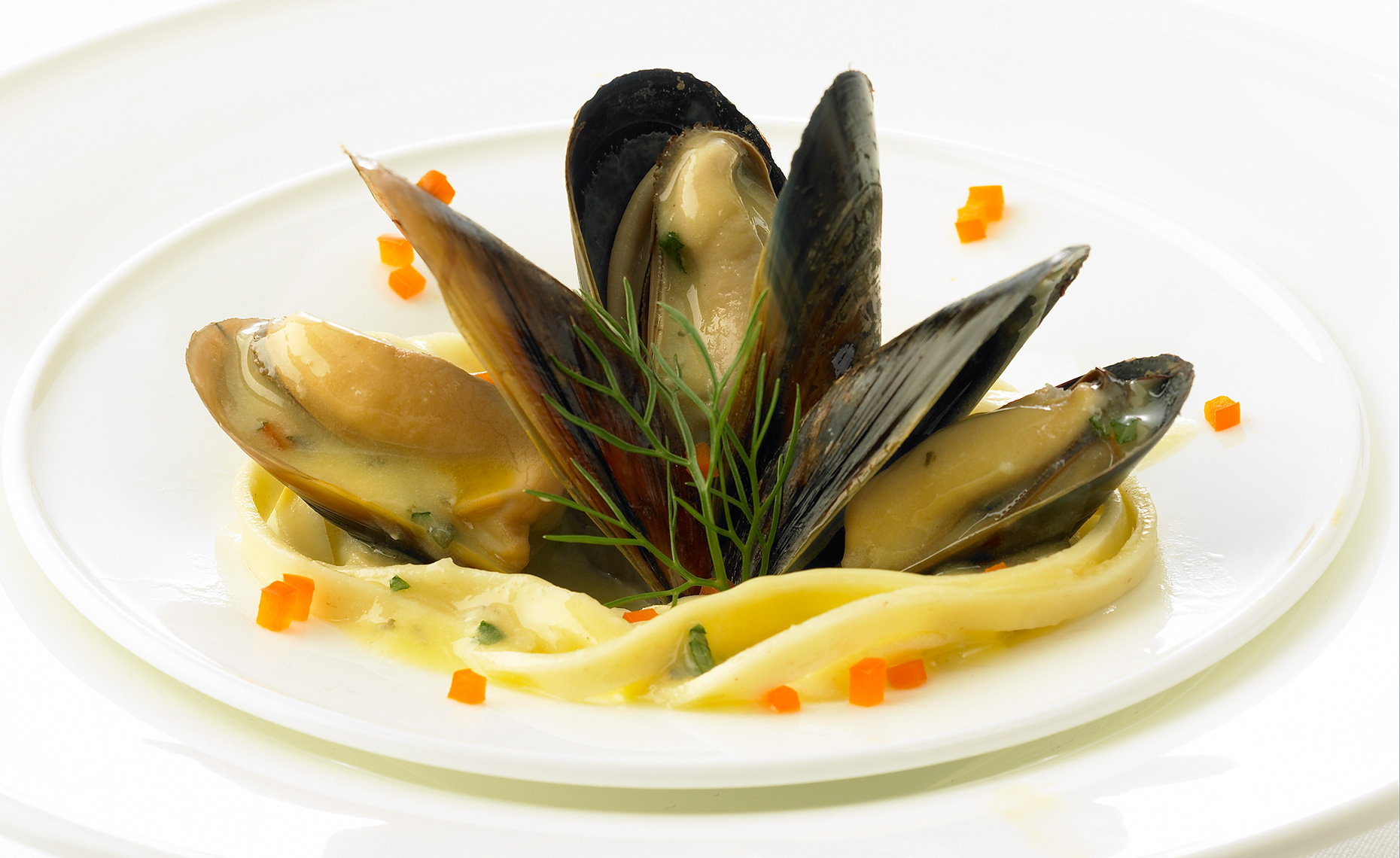 Food Photographer, Seafood Photography | Pohuski Studios,  Garlic Butter Mussels