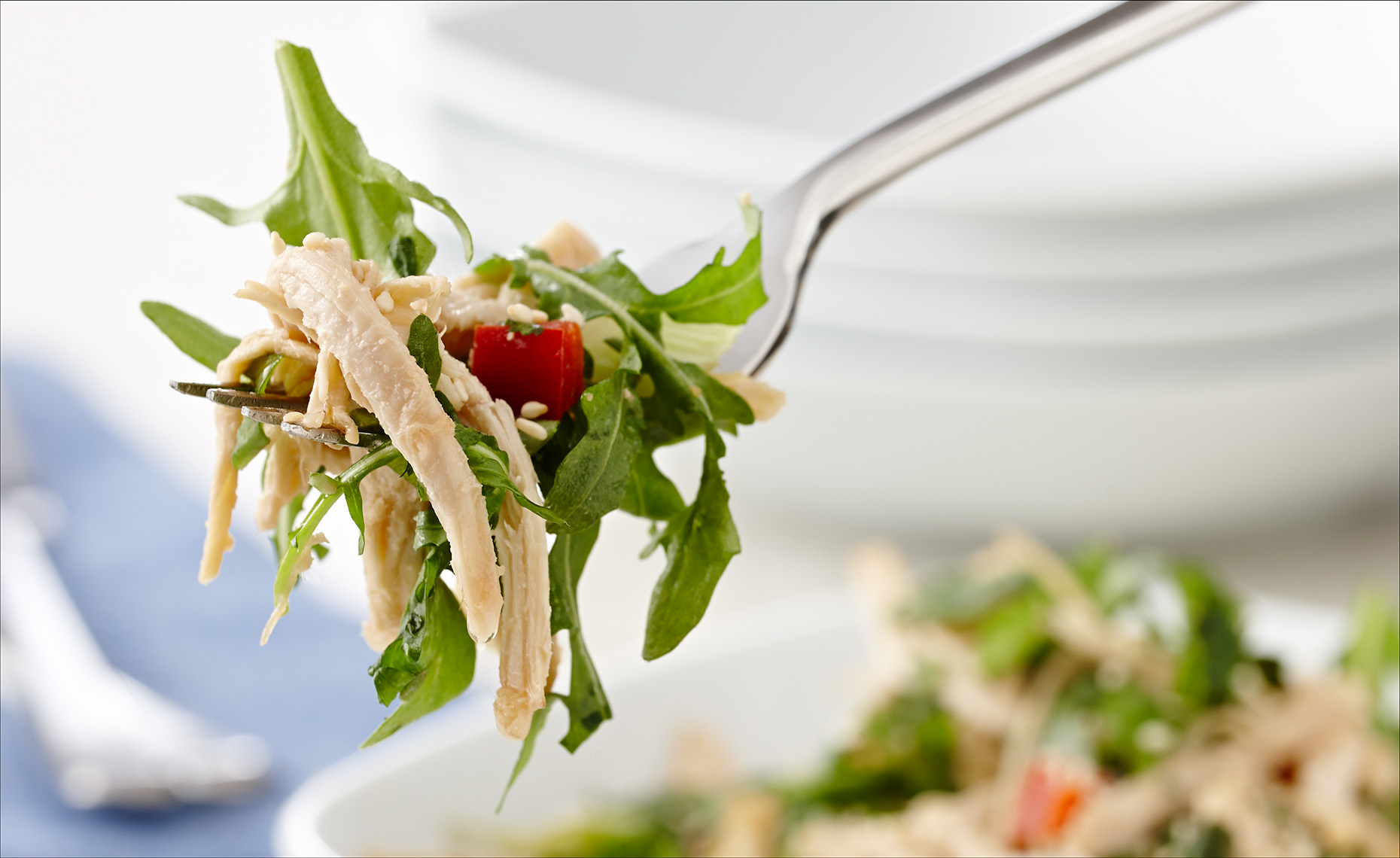 Food Photographer,  Chicken Photography, Poultry Photography | Pohuski Studios, Leftover Sesame Salad