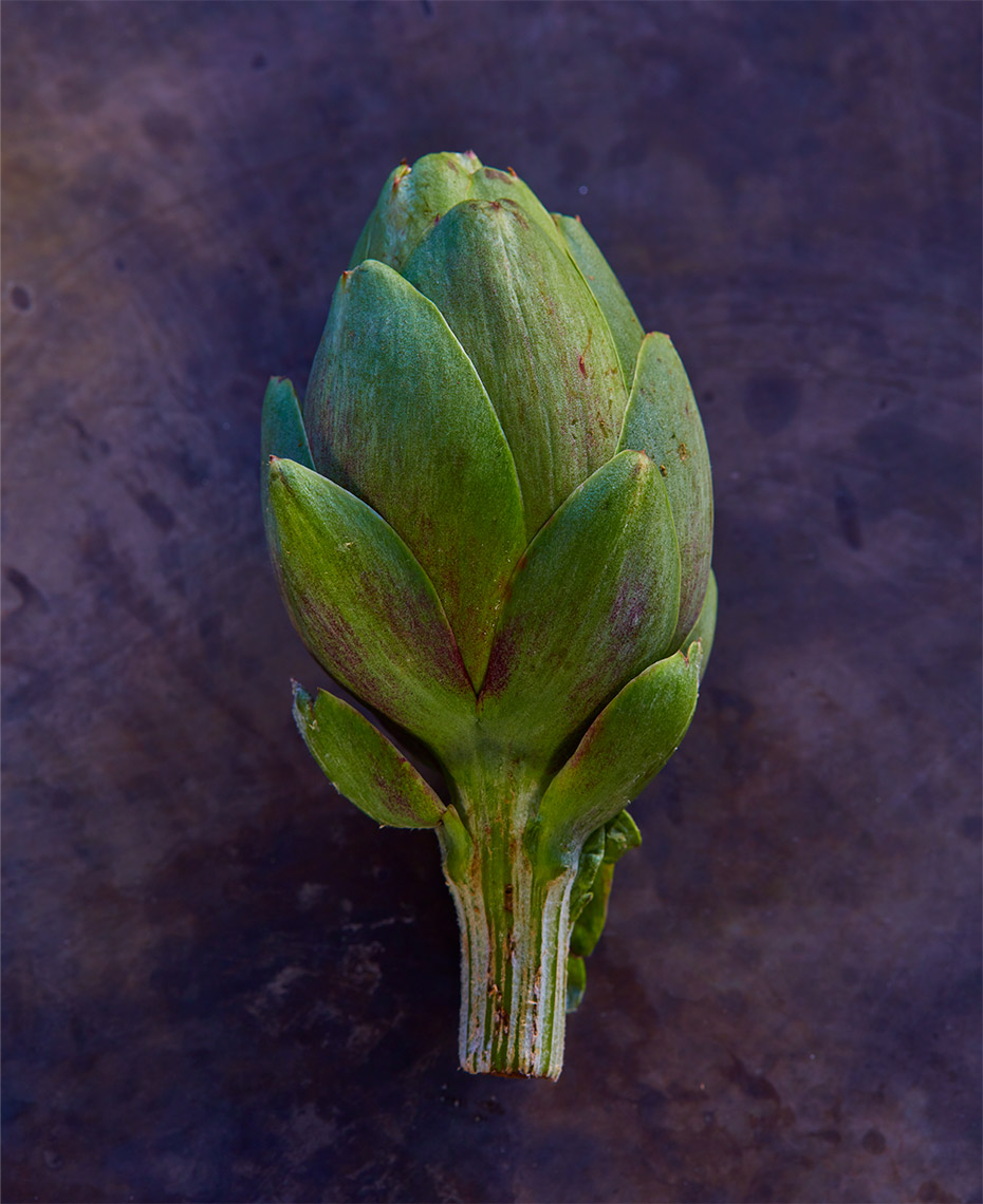 appetizers-fruits-vegetables-photographers-artichokes-49