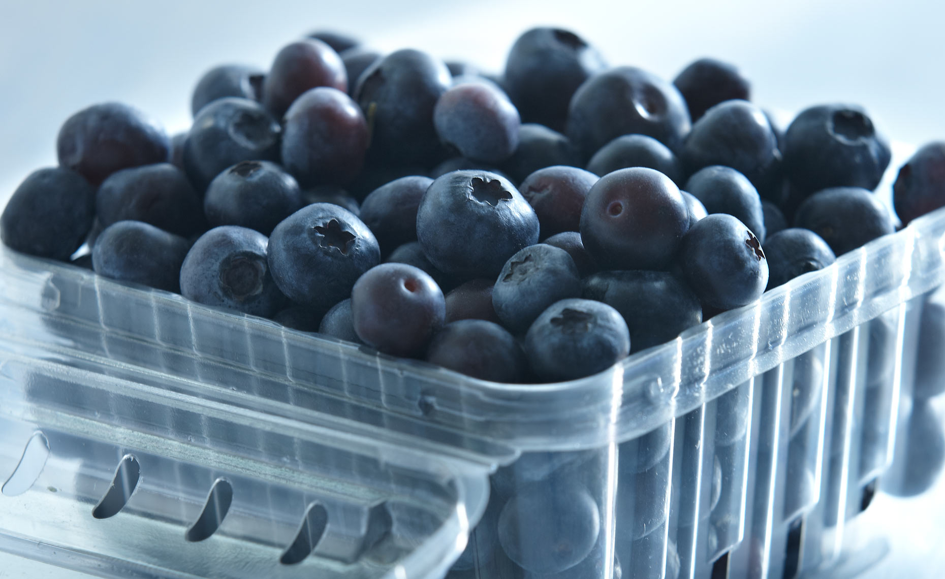 appetizers-fruits-vegetables-photographers-blueberries-26
