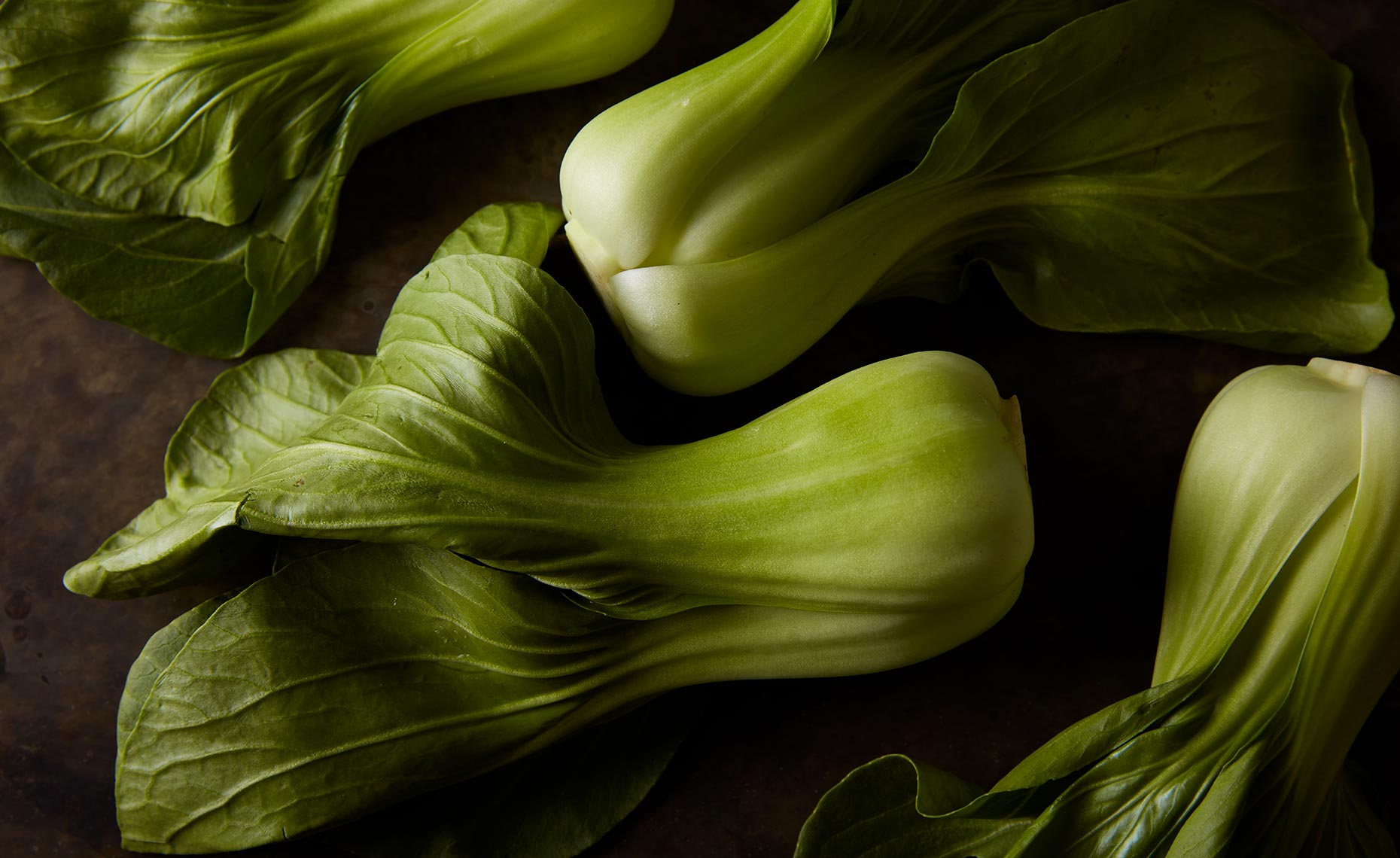 appetizers-fruits-vegetables-photographers-bok-choy-25