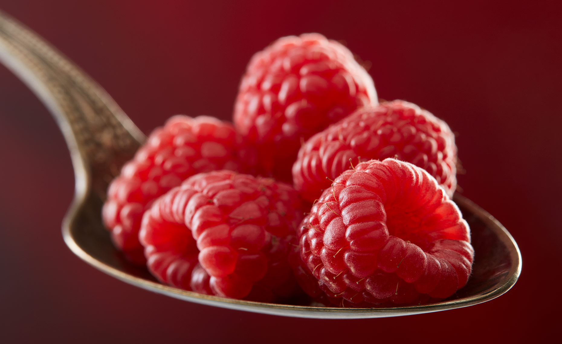 appetizers-fruits-vegetables-photographers-raspberries-34