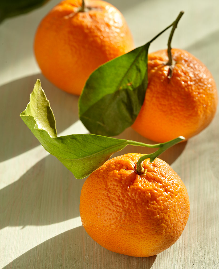 appetizers-fruits-vegetables-photographers-tangerines-123