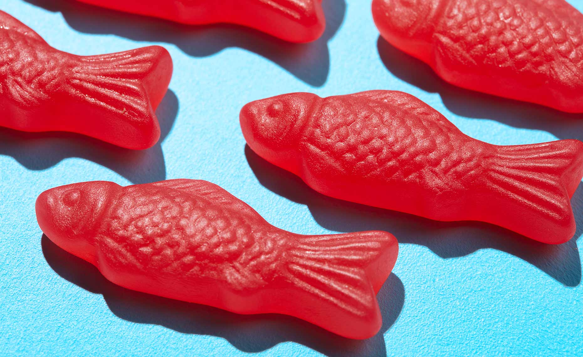 dessert-sweets-photographers-swedish-fish-candy-38