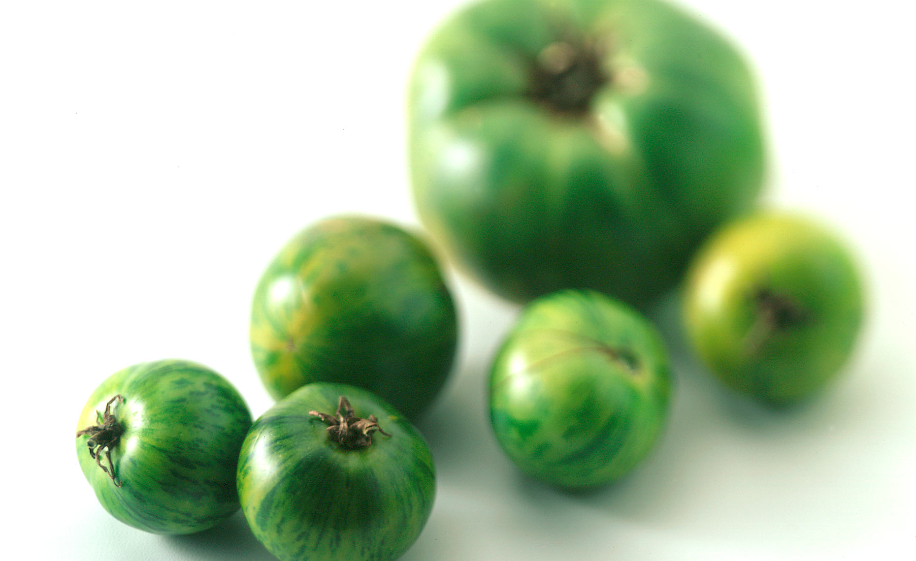 maryland-food-photographers-tomatoes-green-24