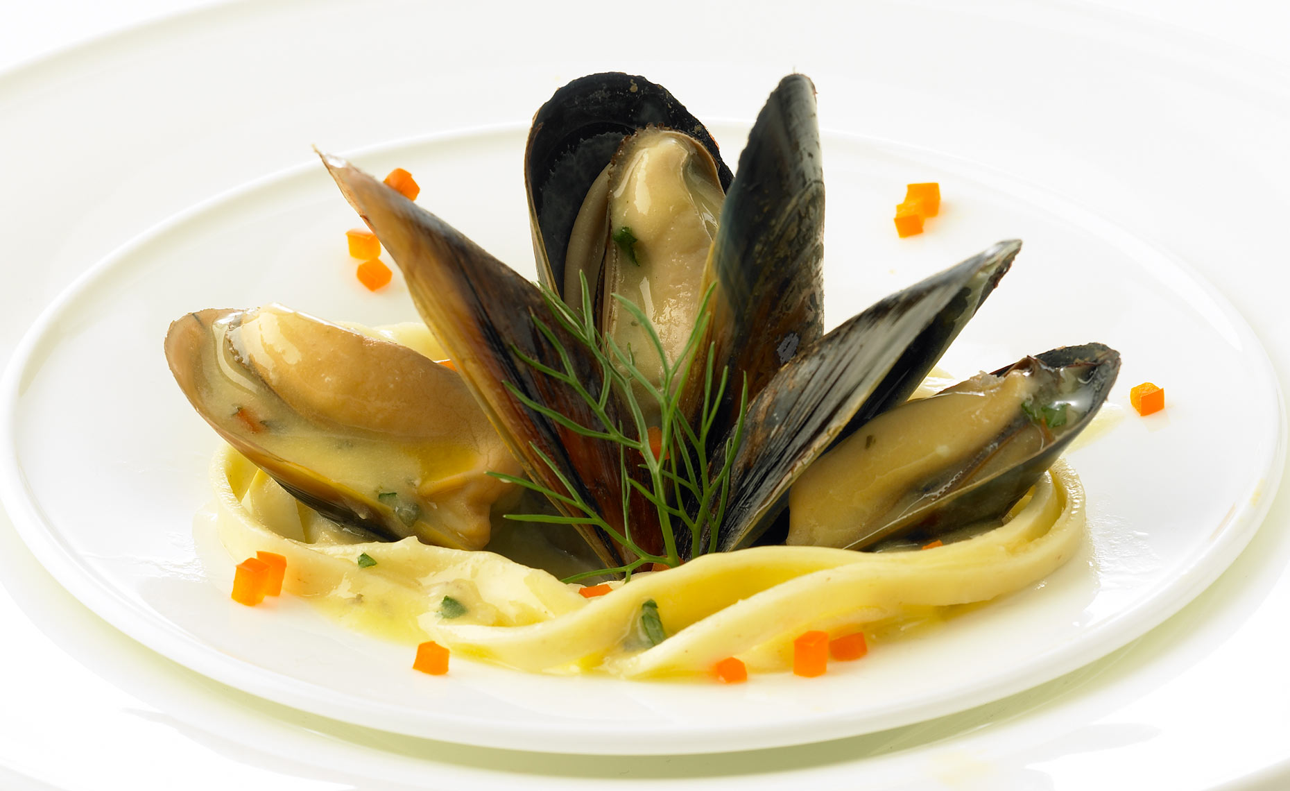 seafood-photographers-mussels-buttered-14